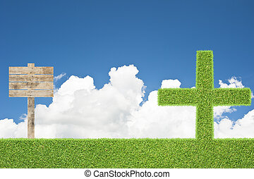 Plus of green grass texture and  background