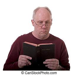 plus vieux, bible, lecture, homme