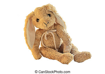 Plush bunny isolated on white