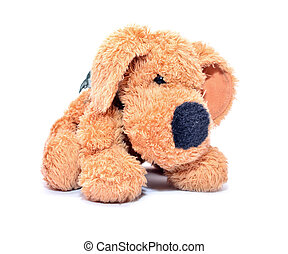 plush dog isolated on white