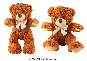 Plush Teddy Bear toy isolated on white background