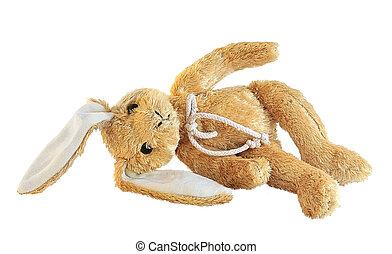 Plush bunny, laying, isolated on white