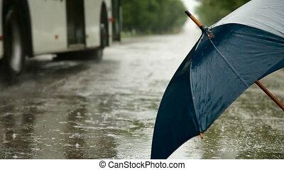 pluvieux, parapluie, route