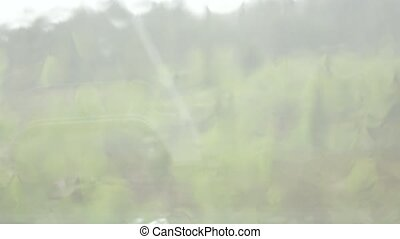 pluvieux, saison, pluie, intempérie, fenêtre, tomber, ...