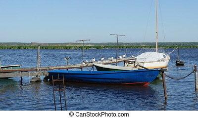 połów łódki, stary, molo