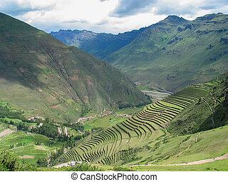 poświęcona dolina, od, incas, w, peru