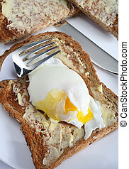 Poached egg on toast - A nice fresh egg, poached, on brown...