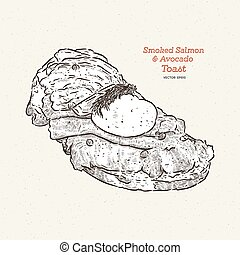 Poached egg on toast, with smoked salmon and avocado, hand draw sketch vector.