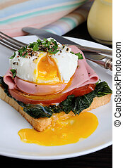 poached Eggs - Poached eggs on toast with tomato, ham,...