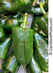 poblano, pimentas pimenta-malagueta, chile, capsicum, annuum