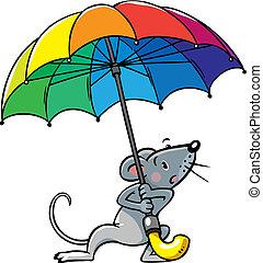 pobre, divertido, pequeño, paraguas, ratón