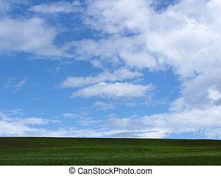 pochmurne niebo, z, trawa, w, pierwszy plan