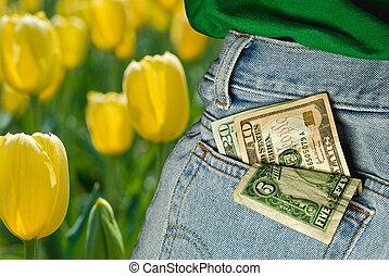 Pocket Money - Money in rear blue jean pocket.