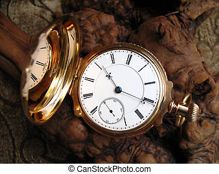 Pocket watch on burl