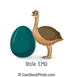 poco, aislado, emu, plano de fondo, pequeño, polluelo,...