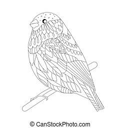 poco, coloritura, seduta, tuo, ramo, uccello, pagina