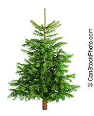 poco, natural, árbol, sin, ornamentos, navidad