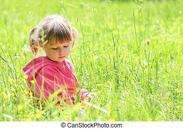 poco, niña, naturaleza