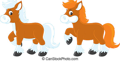 poco, pony