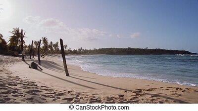 poczta, plaża, złamany, dłoń, huragan, drzewa