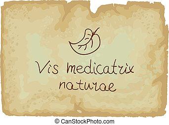 poder, -, naturae, vis, interior, cada, medicatrix, pessoa, cura