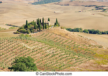 Podere in fall 02