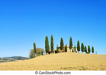 Podere in fall 08