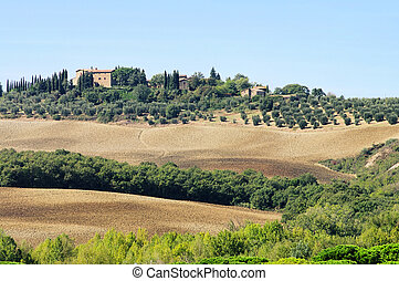 Podere in fall 14