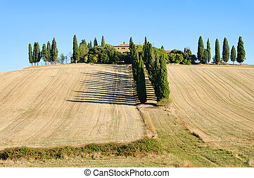 Podere in fall 16