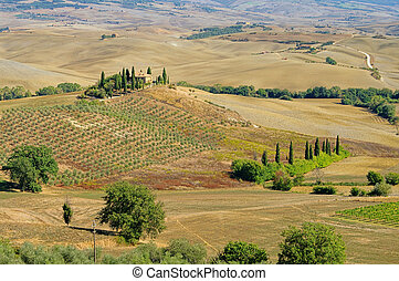 Podere in fall 19