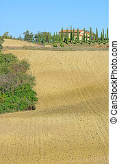 Podere in fall 24