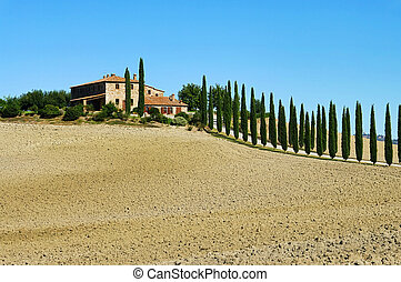 Podere in fall