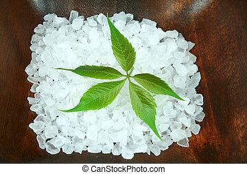 poderoso, folha verde, em, spa