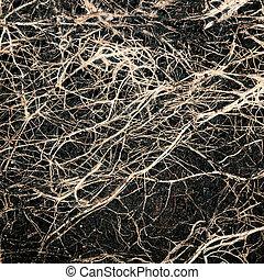 podstawy, w, niejaki, gleba