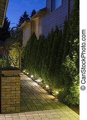 podwórze, ścieżka, ogród, noc