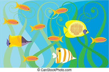 podwodny, świat