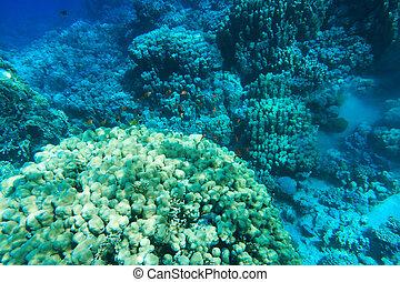 podwodny, cichy