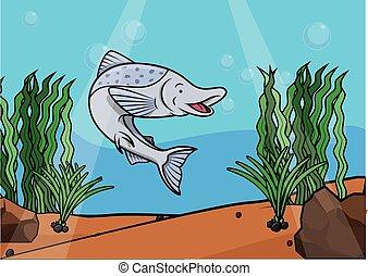 podwodny, fish, łosoś, scena