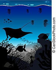 podwodny, fish, sylwetka, scena, stingray