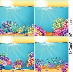 podwodny, koralikowa rafa, scena, tło