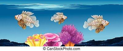 podwodny, lionfish, scena