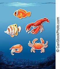 podwodny, zwierzęta, scena