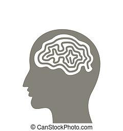 podzemní chodba a, mozek