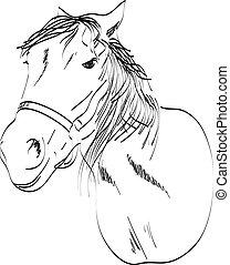 podzemní chodba k, jeden, kůň