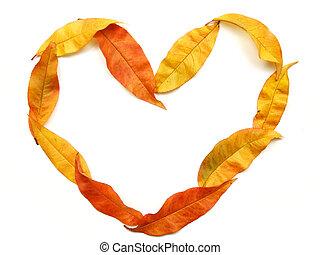 podzim, dělat velmi rád jádro, forma
