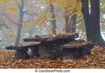 podzim, deska, lavice