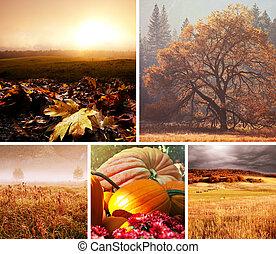 podzim, koláž