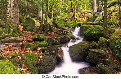 podzim, les, čerň, vodopády, německo, gertelsbacher