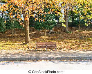 podzim, park lavice