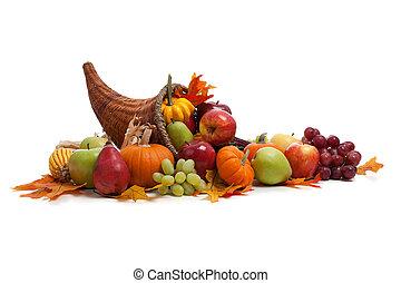 podzim, roh hojnosti, dále, jeden, neposkvrněný, obránce, pozemek